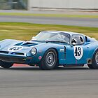 Bizzarrini 5300GT by Willie Jackson