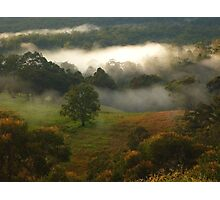 """"""" Morning Bliss"""" Photographic Print"""