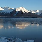 Turnagain Arm Winter Ice Reflection by Bob Moore