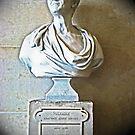 Voltaire by Al Bourassa
