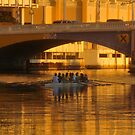 Rowing under the bridge by David Lee Thompson