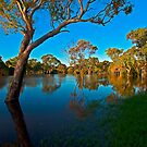 Flooded landscape by Andrew (ark photograhy art)