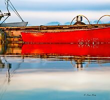 Still  Waters by Carolann23