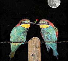 Bee eaters by moonlight by Eric Kempson
