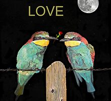 Eternal Love Bee eaters by Eric Kempson