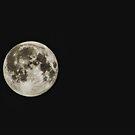 Bright moon, dark night by Guy Carpenter