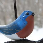 Cold Bluebird by Henry L. Sampson