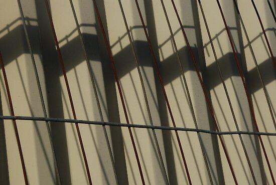 Corrugated Shadows by Celia Strainge
