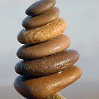 Six Brown Stones by tom j deters