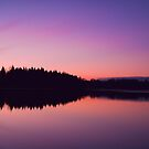 Colemere at Dusk by Paul Whittingham