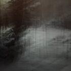 Dark Winter Night by Nancy Fred