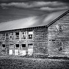 Wiser Barn by Appel