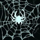 Spider, Spider, in the Dark... by Patricia Anne McCarty-Tamayo