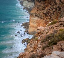 The Great Australian Bight by Emma  Smith