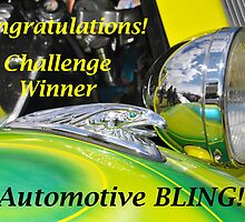 Automotive BLING Challenge Winner Banner by MissyD