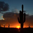 Arid Zone Sunset by B Spencer