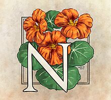 N is for Nasturtium by Stephanie Smith