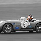 Jaguar C Type (Arif/Buncombe) by Willie Jackson