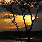 Layered Sunset by maashu