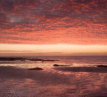 Sunset Glow by Lin-Ann Anantharachagan