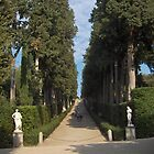 Florence - Giardio di Boboli by Stephen Cross Photography