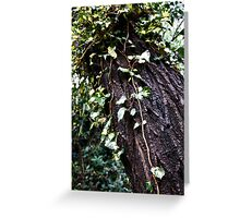 Clinging Vines Greeting Card