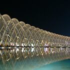 Olympic Arena - Athens by newshamwest