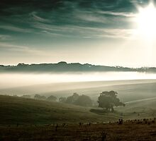 Bellbrae fog by mrjaws