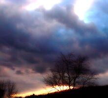 Incoming Night Fall by vigor