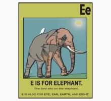 E IS FOR ELEPHANT by S DOT SLAUGHTER