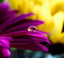 Crystal Ball by aka-photography