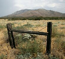 Old Fence in US Desert by rejones