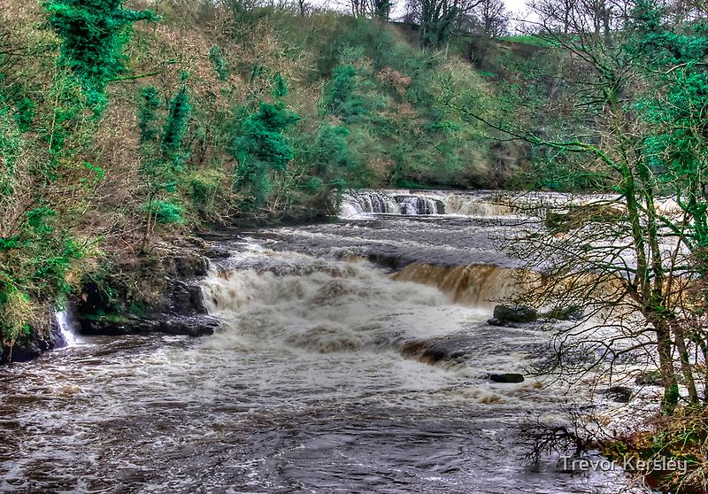Aysgarth Falls  - Yorkshire Dales by Trevor Kersley