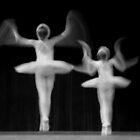 Pas de Deux by Mag Huybreghs