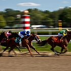 Top of the Stretch - Saratoga Springs, NY by Stephen Cross Photography