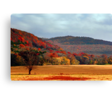Nature Paintings Canvas Print