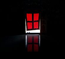 red door. world peace stupa, northern india by tim buckley | bodhiimages