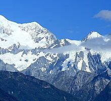 southern alps, fox glacier, south island, nz by rina  thompson