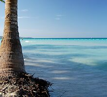 Jamaican Beach by gartmor