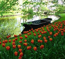 Boats and Blooms by Alison Netsel
