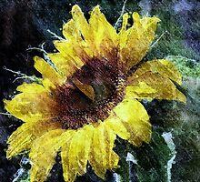 Sunflower Mist by saseoche