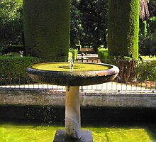 Fountain of the Alcazar by maashu