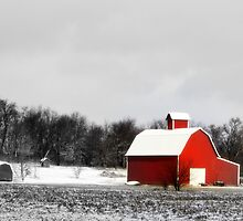Red barn by Lacey Bediz