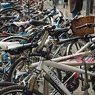 Bikes by jason21