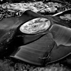 Broken Vinyl Record  by GarethWilton