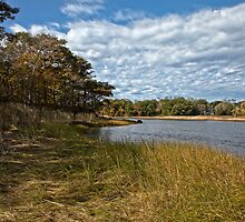 Nichols Field Inlet - Ipswich, MA by Stephen Cross Photography