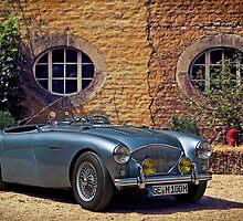 Austin Healey 100 M BN 2 1956 by Uwe Rothuysen