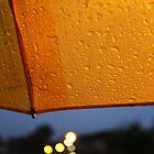 rainy day in may by tguerrero