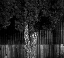lonely by gematrium