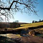 Exmoor nr Hawkridge by Rob Hawkins